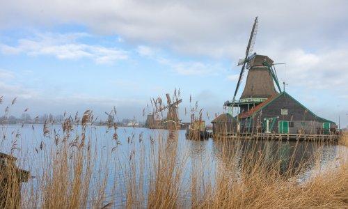 A morning in Zaanse Schans, Amsterdam